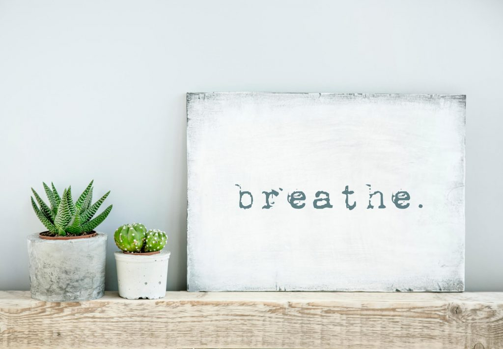 poster stating breathe next to 2 succulents