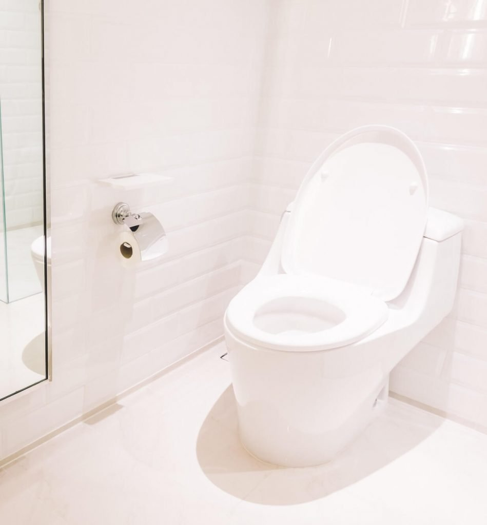 clean, opened, toilet bowl